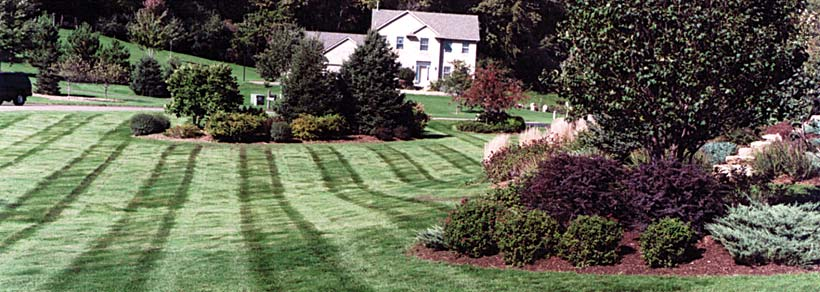 Lawn Green Lawn Care in Stillwater, MN and Hudson, WI