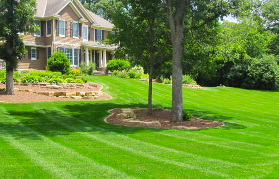 Residential And Commercial Lawn Mowing Services In